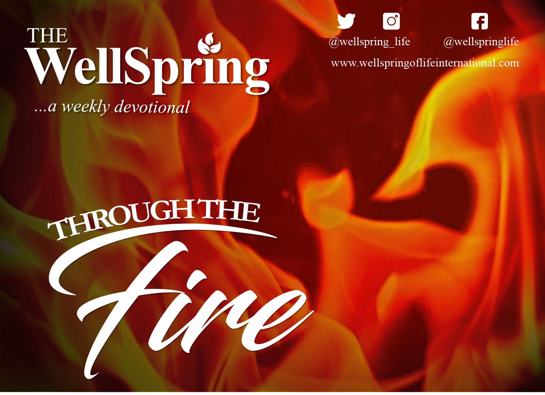 Through the Fire post thumbnail