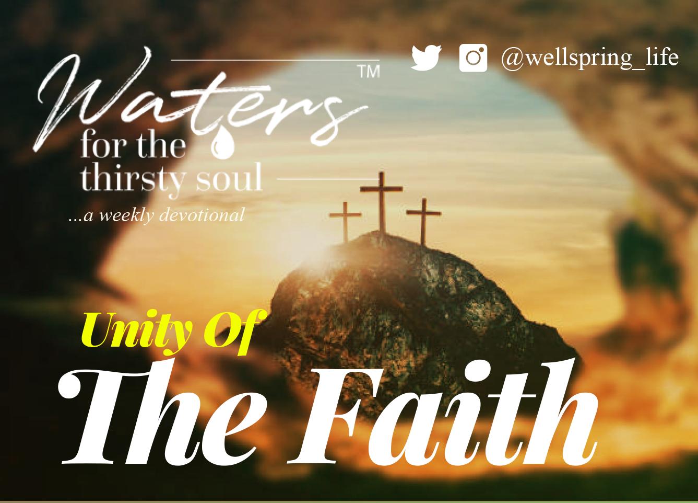 Unity Of The Faith post thumbnail
